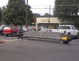 Shopping_cart_moving_machine2_1